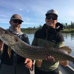 saskatchewan-fly-in-fishing-crl2018-147