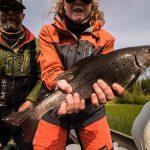 arctic-grayling-fishing-crl-2019-12