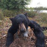bear-hunting-saskatchewan-crl-2019-01-17