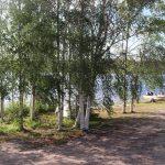 cree-river-lodge-fishing-camp-crl2019-06