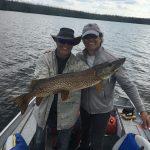 pike-fishing-saskatchewan-crl-2019-136