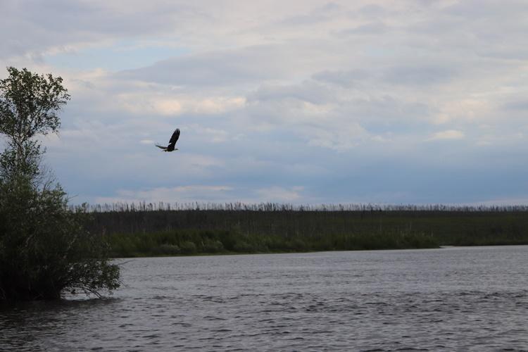 saskatchewan-fishing-fishing-lodge-scenery-crl-2019-30