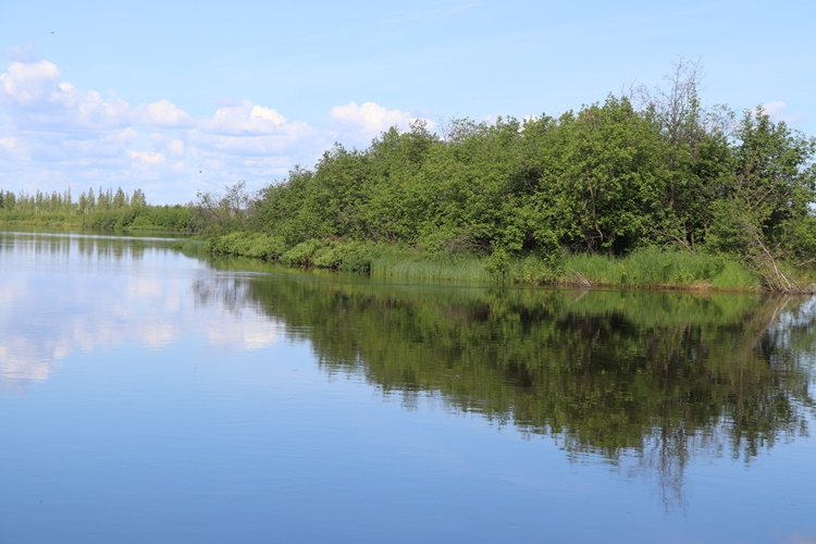 saskatchewan-fishing-fishing-lodge-scenery-crl-2019-36
