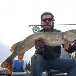 sk-pike-fishing-crl2020-41