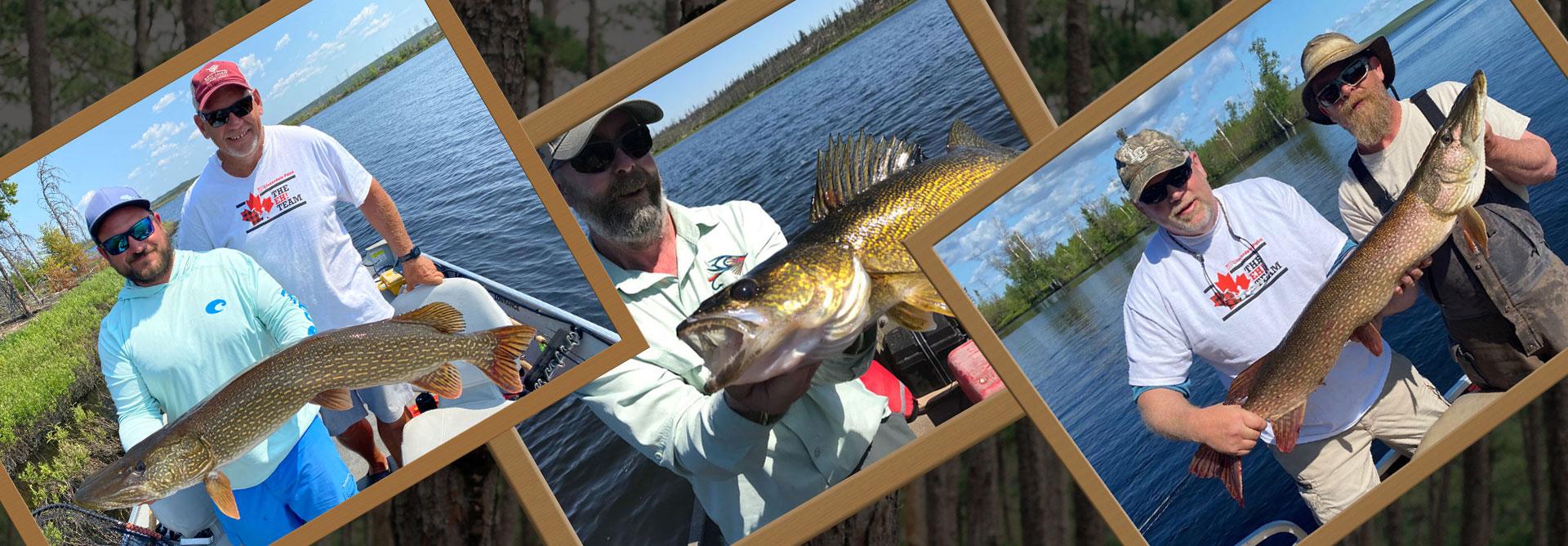 three-framed-fish